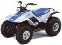 yamaha quads. 1991 the first automatic yamaha atv is breeze, a youth size model. quads