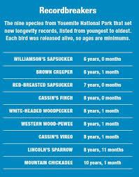 Recordbreakers Chart Birdwatching