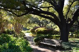 delicieux fort worth botanic garden azaleas albany kid family travel