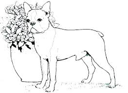 Dog Coloring Pages Dog Coloring Pages Cute Dog Coloring Pages Online