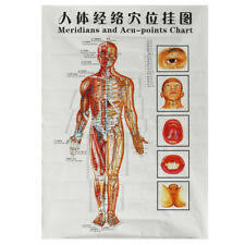 3pcs Medicine Body Acupuncture Points Meridians And Acupoints Chart Map Chart