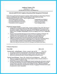 Director Of Internal Auditor Resume