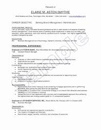 Loan Servicing Specialist Sample Resume Simple Bank Branch Manager