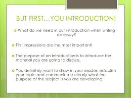 introductory essay examples co introductory essay examples