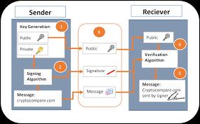 Transaction verification vs block mining. How Do Digital Signatures In Bitcoin Work Cryptocompare Com