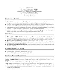 cv sample resume and cv examples converza co