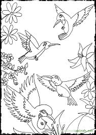 Small Picture Hummingbird Coloring Pages Flying Coloring Pages Pinterest
