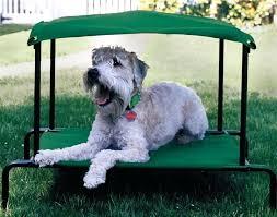 outdoor pet bed breezy bed outdoor dog bed outdoor heated cat bed uk