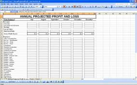 projected profit and loss annual projected profit and loss