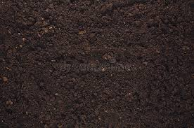 fertile garden. Download Fertile Garden Soil Texture Background Top View Stock Image - Of Closeup, Macro