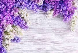Purple Flowers Backgrounds Lilac Flower Background Blooms Pink Flowers On Wood Plank