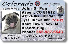 Colorado License Drivers Colorado Drivers