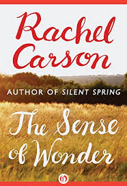 the sense of wonder  rachel carson   amazon comthe sense of wonder by  carson  rachel