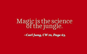 Science Love Quotes Gorgeous Love Quotes Magic Is The Science Of The Jungle Carl Jung