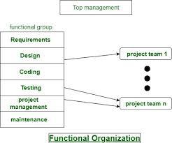Software Development Organizational Structure Geeksforgeeks