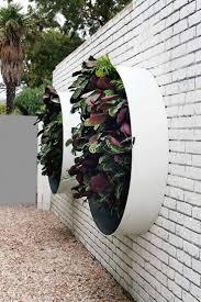 Creative & inspiring vertical gardens. Design by Vertical Gardens  Australia. From the October 2015