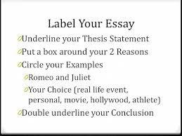 revising your expository essay write an essay that explains  2 label