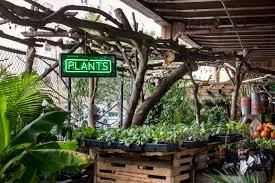 garden center nj. Po Of Mcnaughton S Garden Center Cherry Hill Nj United States Locally Handmade