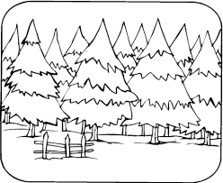 Small Picture Pine Trees coloring page Free Printable Coloring Pages