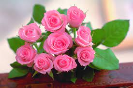 Flowers Wallpapers Beautiful Pictures ...