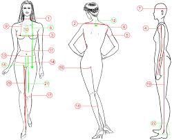 Women Measurements Guide Womens Size Guide How To Measure