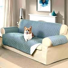 best couch fabric for dogs sofa cover for pets pet furniture covers couch best dogs leather that best furniture for pets durable couch fabric for dogs