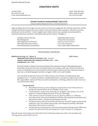 Executive Resume Template 2015 Best of Executive Resume Templates 24 Download Now Print Executive Style