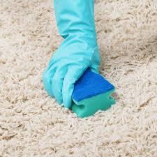 clean pile 3 how to clean pile carpet