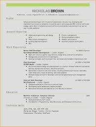 What Goes On A Resume Best Of It Resume Writing Services Elegant