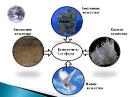 Биосфера земли презентация Презентация Биосфера как единая  Биосфера земли презентация Презентация Биосфера как единая экосистема Земли скачать