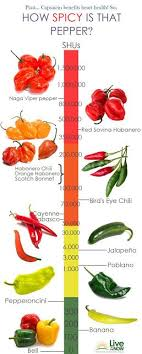 Chilli Hotness Chart Hot Pepper Diagram Wiring Diagram Images Gallery