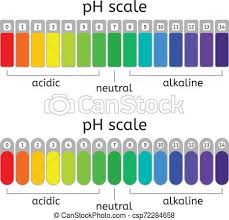 Ph Chart Alkaline Vector Ph Scale