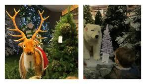 Tong Garden Centre  Picture Of Tong Garden Centre Bradford Tong Garden Centre Christmas Trees