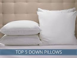 best goose down pillows. Delighful Best Pin It On Pinterest In Best Goose Down Pillows T