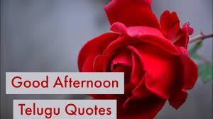 Good Afternoon Telugu Quotes Telugu Whatsapp Status