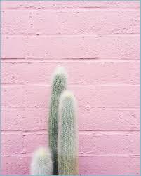 Hope So - Millennial Pink Wallpaper