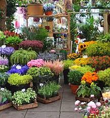Small Picture theLIST London Calling Flower market Columbia and Sunday morning