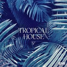 Jgm 33 Tropical House Jgm London