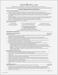 Resume Examples For Finance Manager Elegant Finance Director Resume ...