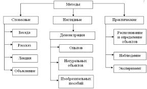 Реферат Биологический эксперимент Роль билогического  Раздел 2 ПРАКТИЧЕСКАЯ ЧАСТЬ