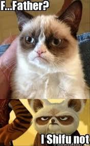 grumpy cat, father #GrumpyCat #Memes | grumpy cat | Pinterest ... via Relatably.com