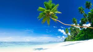 beautiful beach scenes