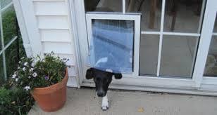 diy dog doors. In-Glass Pet Doors Diy Dog