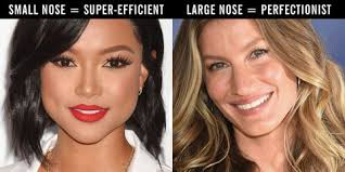 What Nose Shape Do You Have 19 Different Nose Shapes