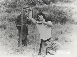 「蛇拳 」の画像検索結果