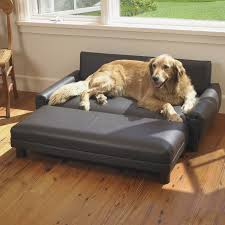 best sofa for dogs. Sofa:Best Sofa Dogs Home Decoration Ideas Designing Cool And Architecture Amazing Best For