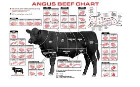 Cow Meat Chart Poster Beef Cuts Of Meat Butcher Chart Poster 40 Inch X 24 Inch 21 Inch X 13 Inch