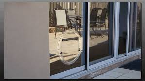 hartley glass pet door before view image