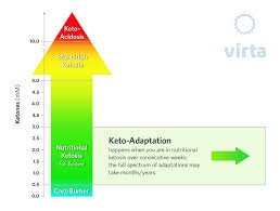 Ketones And Nutritional Ketosis Basic Terms And Concepts