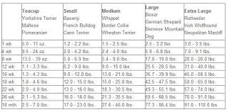 Labrador Retriever Puppy Weight Chart Puppy Weight Chart Mixed Breed Google Search Puppy